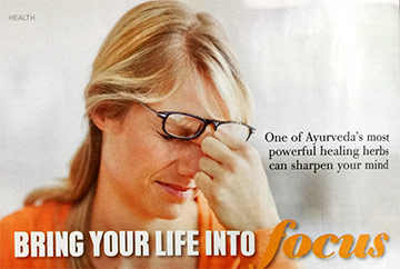 Bring Your Life Into Focus